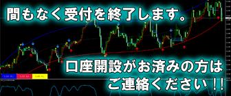 高勝率&大人気インジケーター【 川ツール 】無料プレゼント
